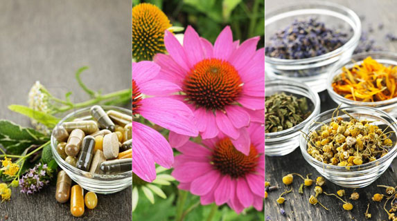 What is Herbal Medicine? image